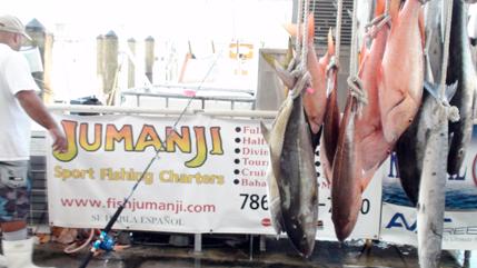 Fish Jumanji Snapper Charter