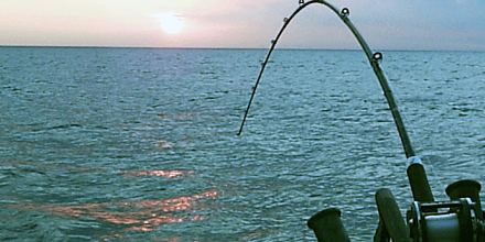 Saltwater Fishing Rod