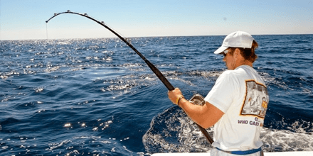 Things You Should Know About Tarpon Fishing