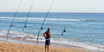 Surf Fishing Florida